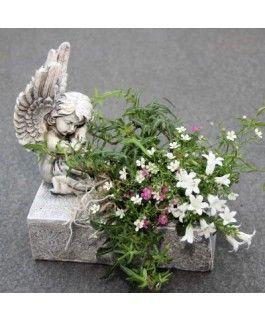 Engel mit Plfanzgefäss- rechteckig- Resinvon Zauberblume
