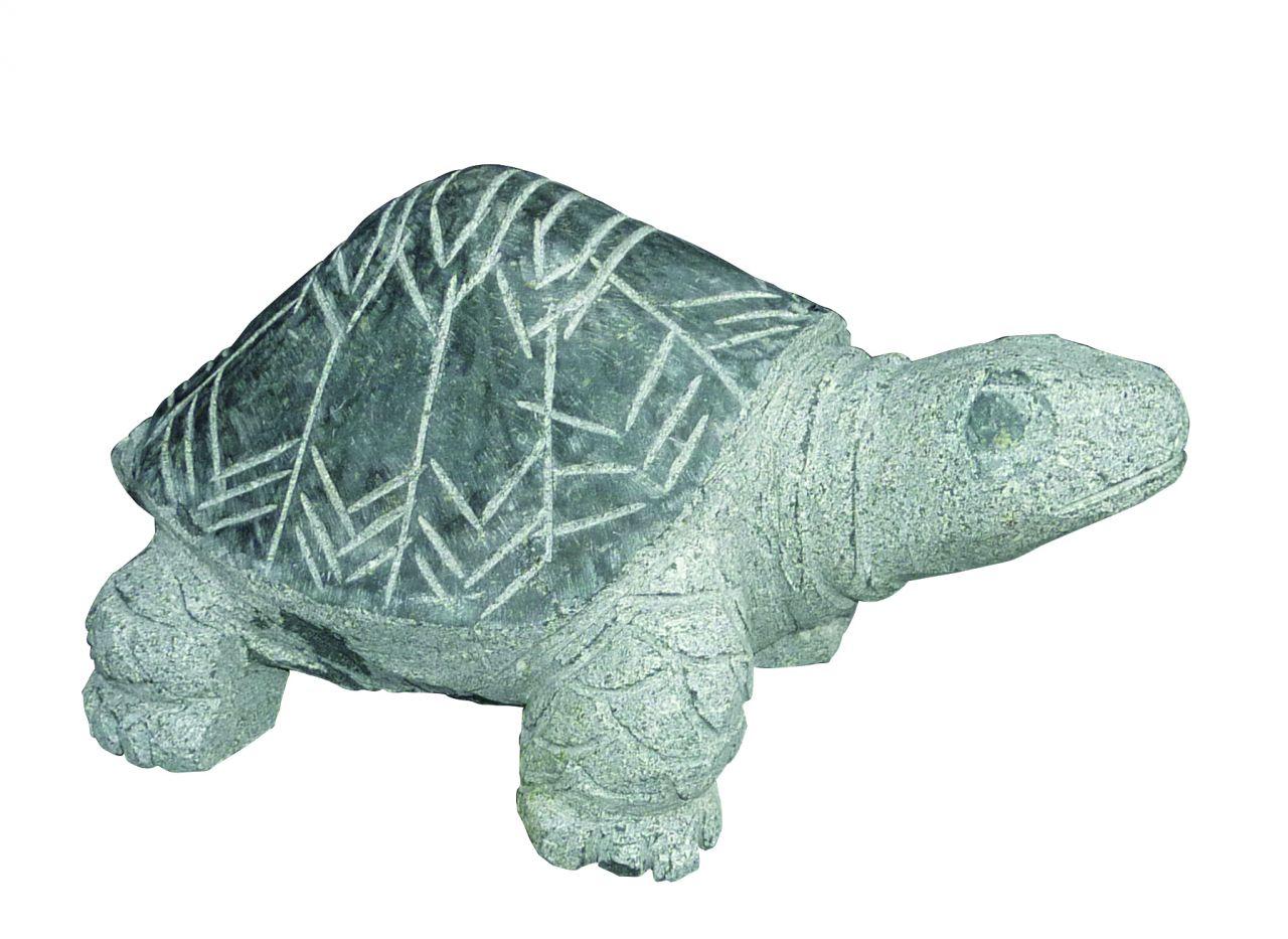 Granit Schildkröte